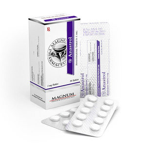Magnum Anastrol - buy Anastrozole in the online store | Price
