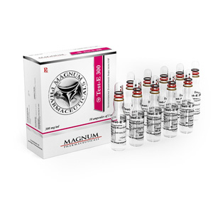 Magnum Test-E 300 - buy Testosterone enanthate in the online store | Price